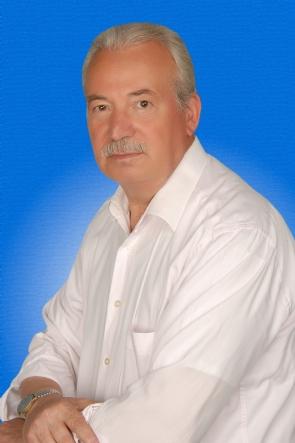 hasan_g_ler_a_ustos2012.jpg